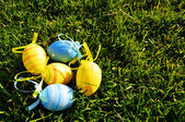 Five small easter colored eggs on grass — Stock Photo