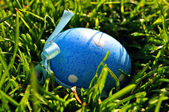 Blue Easter egg in spring grass — Stock Photo