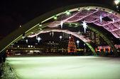 Christmas skate — Stock Photo