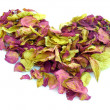 Heart from petals — Stock Photo