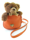 Teddy bear in a bag — Stock Photo