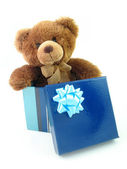 Teddy bear in gift box — Stock Photo