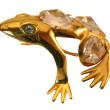 Stock Photo: Gold frog.