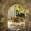 HDR images of a gateway — Stock Photo