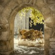 Stock Photo: HDR images of gateway