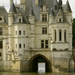 Castle chenonceau - Stock Photo