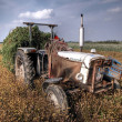 Royalty-Free Stock Photo: Hdr image of a tractor on farmland