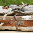 Old luggage — Stockfoto #1515315