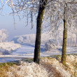 Gorgeous winter landscape — Stock Photo
