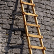 Ladder against a brick wall - Stock Photo