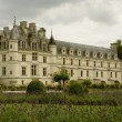 Castle chenonceau in france — Stock Photo