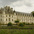 Stock Photo: Castle chenonceau in france