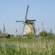 Windmills kinderdijk in holland — Stock Photo
