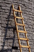 Ladder against a brick wall — Stockfoto