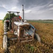 Hdr image of a tractor on farmland — Stock Photo