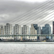 Erasmusbridge (Rotterdam, The Netherland — Stock Photo