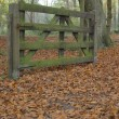 Autumn landscape with a fence — Stock Photo #2541848
