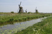 Mill on kinderdijk holland — Stock Photo