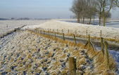 Beautiful winter countryside holland — Stock Photo