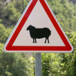 Warning roadsign — Stock Photo
