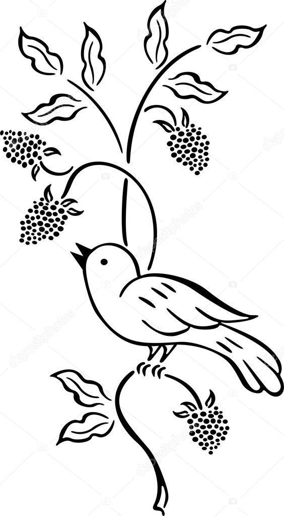 How To Draw Hello Nurse From Animaniacs in addition Paw Prints Animal Clipart moreover Lightbox2 moreover Massachusetts Map Clipart as well Build Barn Owl Nest. on blue bird