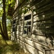 The lost house in Chernobyl region — Stock Photo