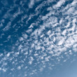 Cirrus on the blue sky — Stock Photo