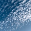Cirrus on the blue sky - Stock Photo