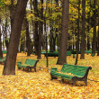 Empty bench in urban park in autumn — Stock Photo