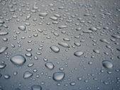 Rain drops — Stock Photo