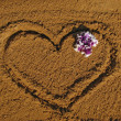 Heart on sand — Stock Photo #1555133