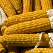 Yellow corn collection — Stock Photo