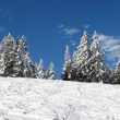 Winter in de Alpen — Stockfoto