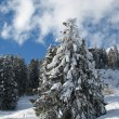 Winter in the alps — Stock Photo #1526042