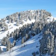 Winter in den Alpen — Stockfoto
