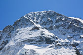 Top of the Jungfrau mountain. Swiss alps. — Stock Photo
