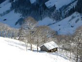 Small cottage in alps — Stockfoto