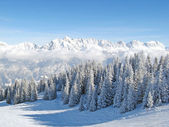 Winter in the alps — Stock Photo