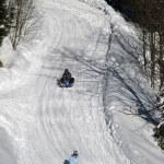 invierno en los Alpes — Foto de Stock   #1561808