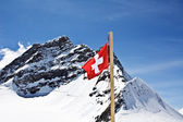 Top of the Jungfrau — Stock Photo