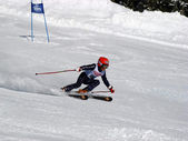 Skiing race — Stock Photo