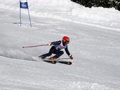 Skiing race — Stock Photo