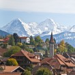 Stock Photo: Autumn in swiss alps