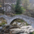 Ancient stone bridge in Verzasca valley — Stock Photo #1613850