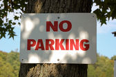 No Parking Sign Nailed Onto A Tree — Stock Photo