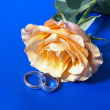 Royalty-Free Stock Photo: Rose and  wedding rings