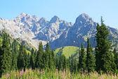 Bergslandskap, Centralasien — Stockfoto