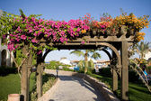 Flower arch — Stock Photo