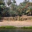 Stock Photo: Old village at nile river