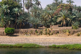 Old village at nile river — Stock Photo